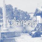 LlamasBro