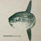 TheOceanSunfish